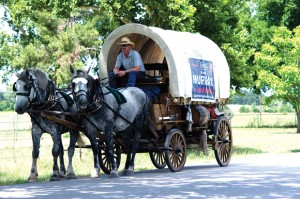 CAMPAIGN TRAIL - Ken Murray, Democratic candidate for Precinct 3 Justice of the Peace, hit the back roads of the precinct in a covered wagon last week. Messenger photo by Joe Duty