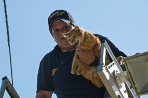 Rhome Volunteer Firefighter Katy Wacasey saved the day for this cat caught in a telephone wire in Boyd. Photo by Joe Duty.