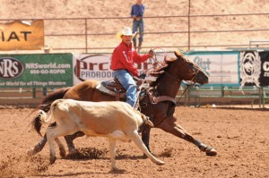 QUICK CATCH - Paradise eighth-grader Brett Stuart ropes a steer in the National High School Rodeo Association Junior Division finals in Gallup, N.M.  Submitted photo courtesy of Jennings Photography