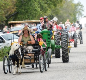 LEADING THE WAY - Teresa Cox drives her pony-powered wagon Saturday in the Greenwood Fall Festival's Parade. The parade highlighted  the event that raises money to support several community services, projects and organizations. Messenger photo by Joe Duty