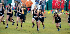 OFF THEY GO - Alvord's cross country team starts its run to a second place finish Saturday. Messenger photo by Mack Thweatt