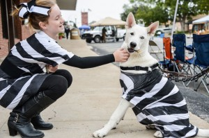TALENTED PUP - Katelyn Lanfear and her 6-month-old white German shepherd, Koda, participated in the Coal Miners' Heritage Festival pet parade Saturday. Koda, who can sit, shake, lay down and will stare at a bone placed in front of him until told it's OK to eat it, won Best Trick. Messenger photo by Joe Duty