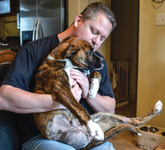 BACK FROM THE BRINK - James Tucciarone holds Ditch, nicknamed Lt. Dan, just days after surgery to remove one of the dog's legs. Ditch has adapted quickly to life as a tripod and can already run and play with other dogs. Messenger photo by Joe Duty