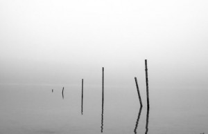 REFLECTIONS - Metal t-posts jut from the water on a recent foggy morning at Black Creek Lake. Messenger photo by Jimmy Alford