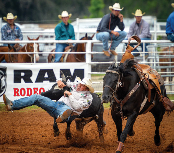 CHIN DOWN, LEGS UP - Decatur's K.C. Jones tackles a steer during the steer wrestling competition Thursday at Butterfield Stage Days PRCA Rodeo in Bridgeport. His time of 4.5 second left him in second place going into the rounds Friday and Saturday night. Messenger photo by Joe Duty