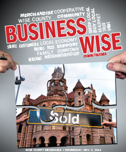 Business-Wise-2014