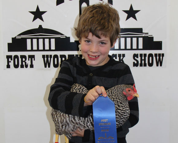 Placing with Poultry