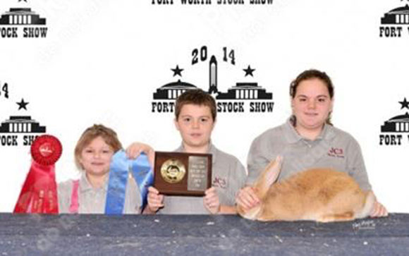 Rabbit Winners