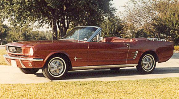 Mustang Fever